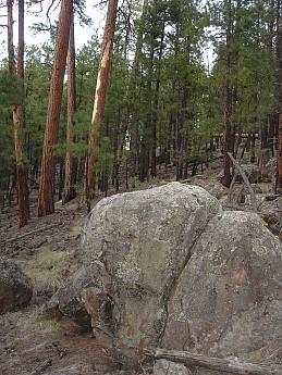 Camps-at-Shultz-Creek-Canyon-TH-044.jpg