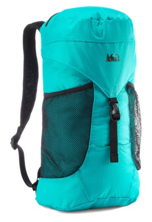 photo: REI Stuff Travel Daypack daypack (under 2,000 cu in)