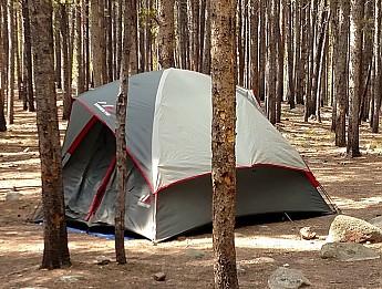 Timber-Top-tent.jpg