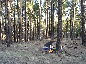 Camps-at-Shultz-Creek-Canyon-TH-124.jpg