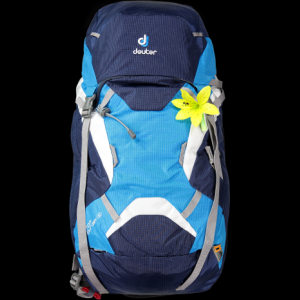 Deuter OnTop Tour ABS 38+ SL