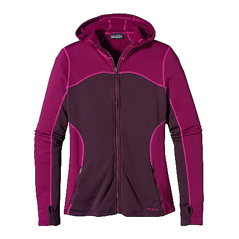 Patagonia Capilene 4 Expedition Weight Full-Zip Hoody