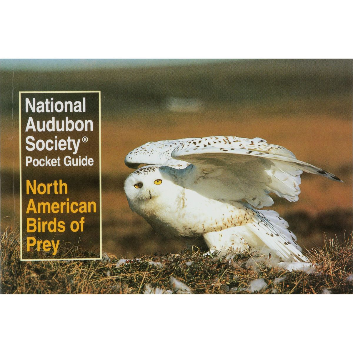 photo: National Audubon Society Pocket Guide To Familiar Trees Of North America - West plant/animal identification guide