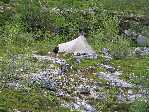 Langglupsdalen-camp.jpg