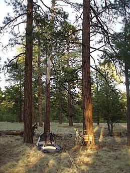 Camps-at-Shultz-Creek-Canyon-TH-171.jpg