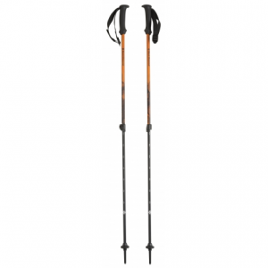 photo: Black Diamond First Strike rigid trekking pole