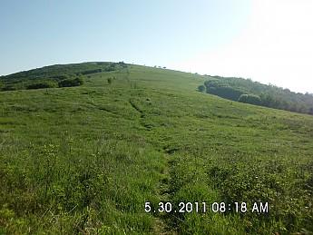 Summer-Trip-1-160.jpg
