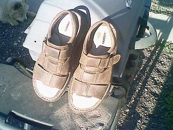 Skechers-size-13-sandals.jpg