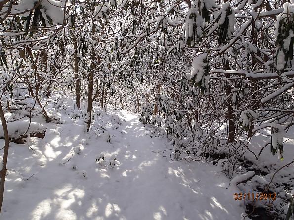 February-2012-027.jpg