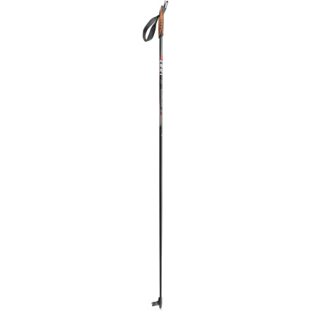 photo: Leki Composite Ski Pole nordic touring pole