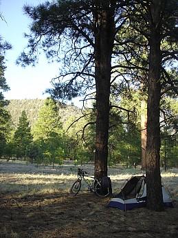Camps-at-Shultz-Creek-Canyon-TH-263.jpg