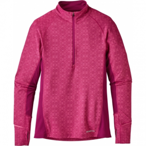 Patagonia All Weather Zip-Neck Hoody