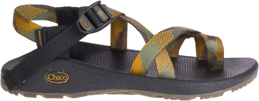 photo: Chaco Z/Cloud 2 sport sandal