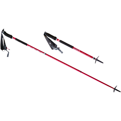 photo: MSR Flight 3 alpine touring/telemark pole