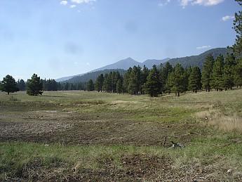 Flagstaff-az-May-2012-272.jpg
