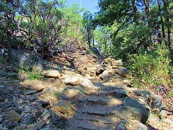 Pohono-Trail.jpg