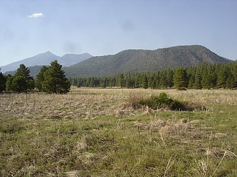 Flagstaff-az-May-2012-275.jpg