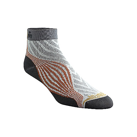 photo: Wigwam Ironman Surge Pro Quarter Length running sock