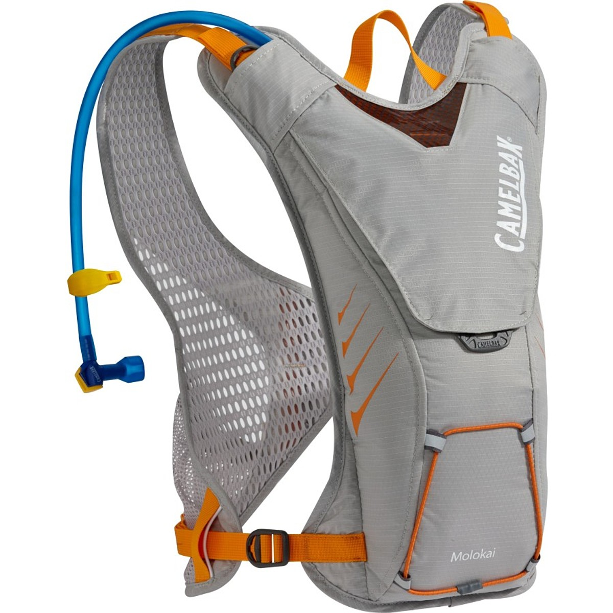 photo: CamelBak Molokai Hydration Pack hydration pack