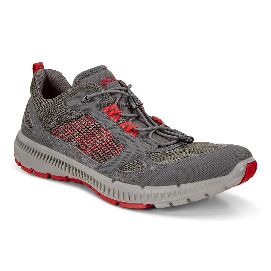 photo: Ecco Terracruise II trail shoe