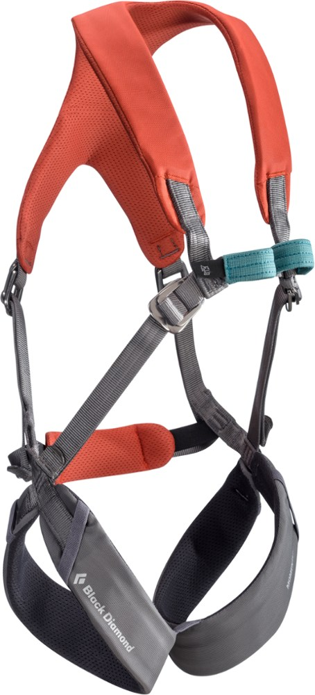 photo: Black Diamond Momentum Kid's Full Body Harness full-body harness