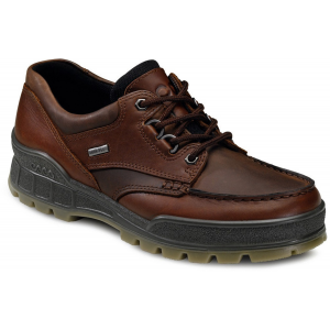 photo: Ecco Track II trail shoe