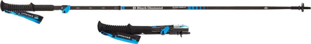 photo: Black Diamond Distance Carbon FLZ trekking pole