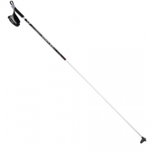 Salomon Active Ski Pole