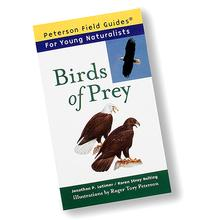 Peterson Birds of Prey: Field Guide For Young Naturalists