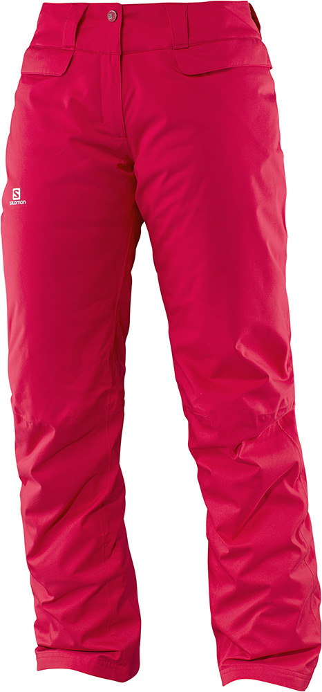 Salomon Enduro Pant