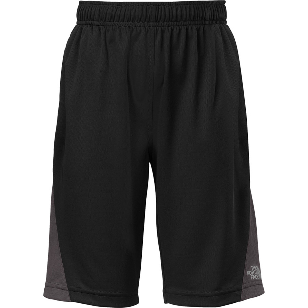 photo: The North Face Shifter Performance Shorts active short