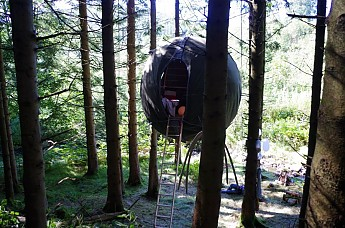 Tree-tent-2.jpg