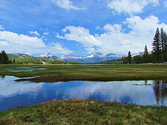 Tuolumne-Meadows.jpg