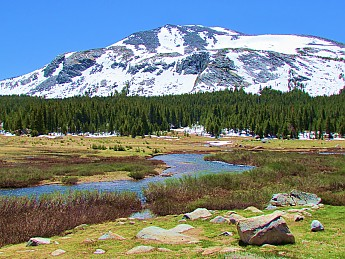 Tuolumne-Meadows-2-.jpg