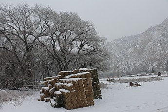 IMG_1526-Hay-bales-near-Tortoise-and-Har