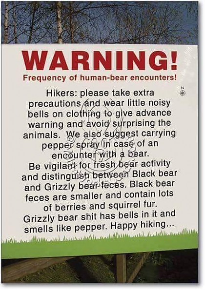 Bear-Warning.jpg