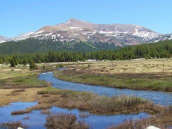 Mt-Gibbs.jpg