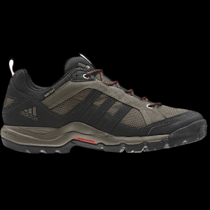 photo: Adidas Women's Karak Gore-Tex trail shoe