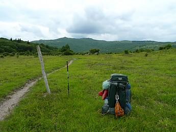TRIP-123-449.jpg