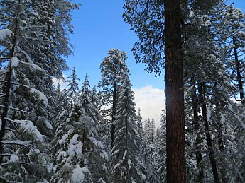 snow-camping-12222012-002_opt.jpg