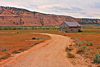 IMG_0977-Old-cabin-near-Tropic-Utah.jpg