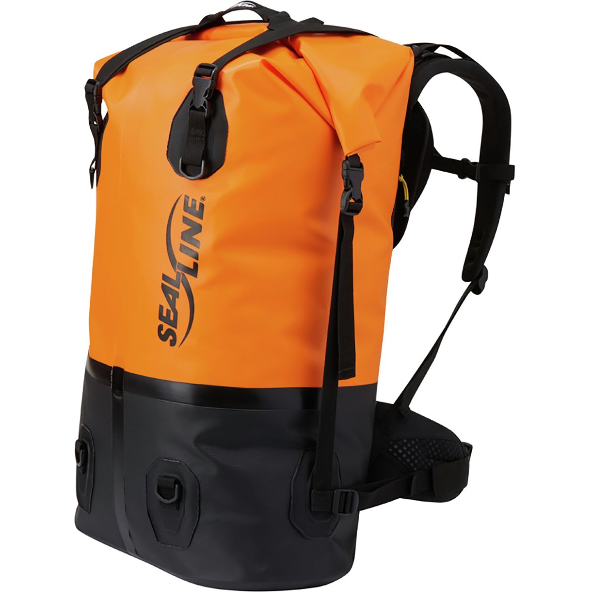 photo: SealLine Pro Dry Pack dry pack