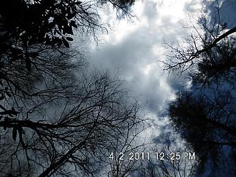 Spring-Trip-4-1-11-033.jpg