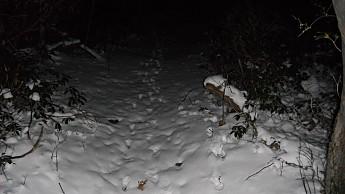 LHHT-January-2012-004.jpg