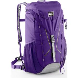 photo: REI Flash 22 Pack daypack (under 2,000 cu in)