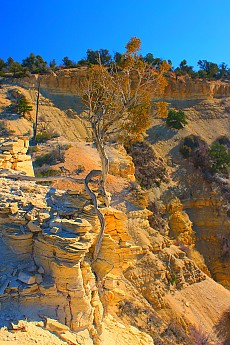 IMG_1243-Upper-side-canyon-off-Red-Hollo