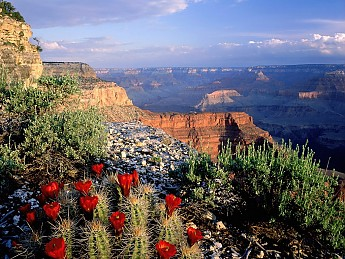 Arizona_Grand_Canyon.jpg