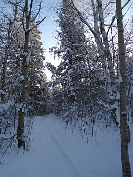 CE-Lee-8-December-2012-028.jpg