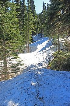 Mc111-Snow-5000-ft12.jpg