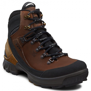 photo: Ecco Men's Biom Hike GTX hiking boot